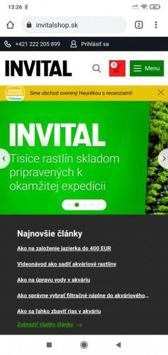 Screenshot_2021-07-07-13-26-52-950_com.android.chrome.jpg